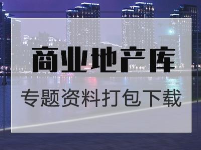 步行街资料大全-考察调研案例报告专题资料包下载(共41套打包)