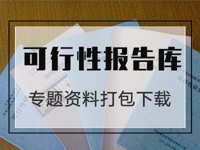 土地拍賣可行性研究報告專題資料包(共14套打包)
